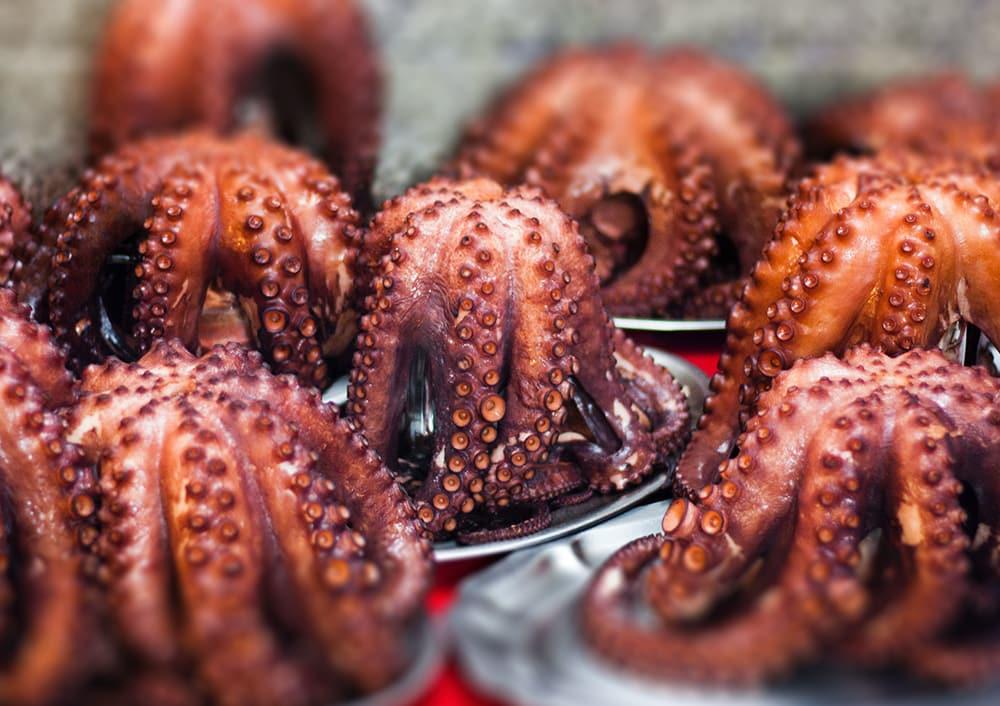¿Dónde comer mejor marisco en Galicia?